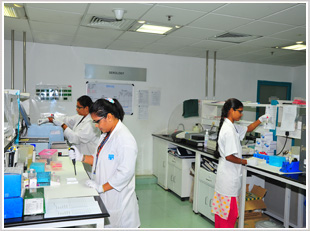 L & T Microbiology Research